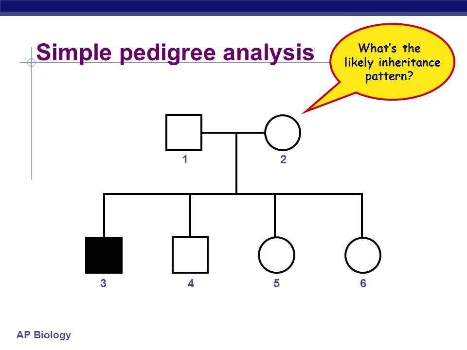 AP Biology Practice Problem 4: AA x aa aa A A aa a a AA A A 1 homozygous dominant, 1 homozygous recessive