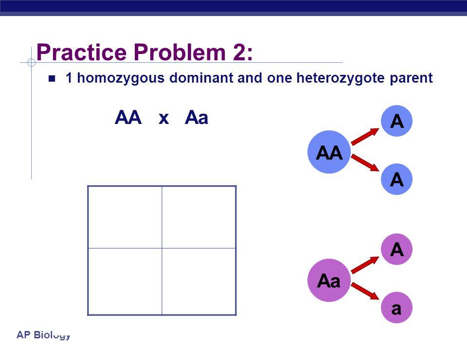 AP Biology Practice Problem 1: AA x AA A A A A AA A A A A 2 homozygous dominant parents