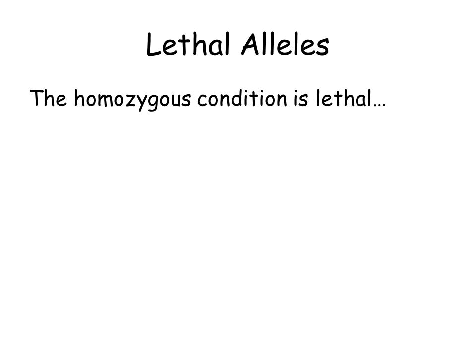 The homozygous condition is lethal…
