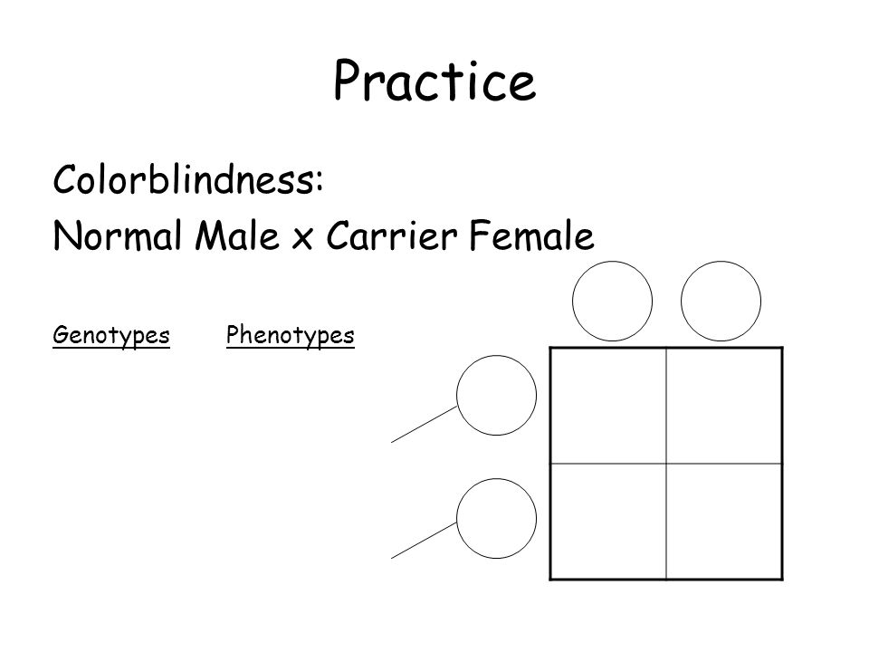 Practice Colorblindness: Normal Male x Carrier Female GenotypesPhenotypes
