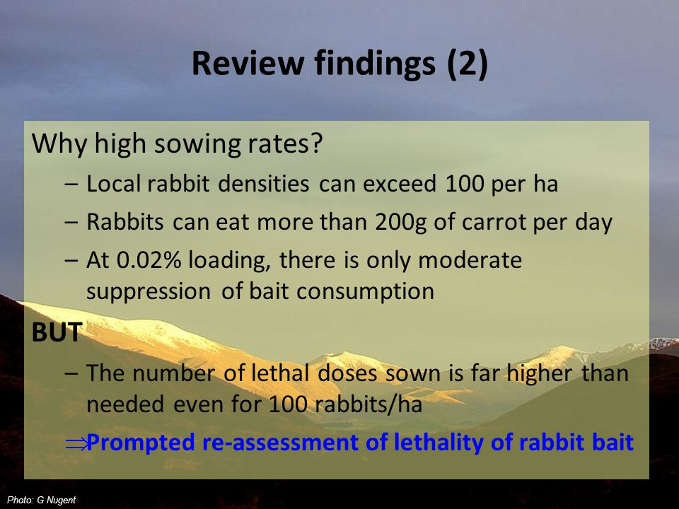 Review findings (2) Why high sowing rates.