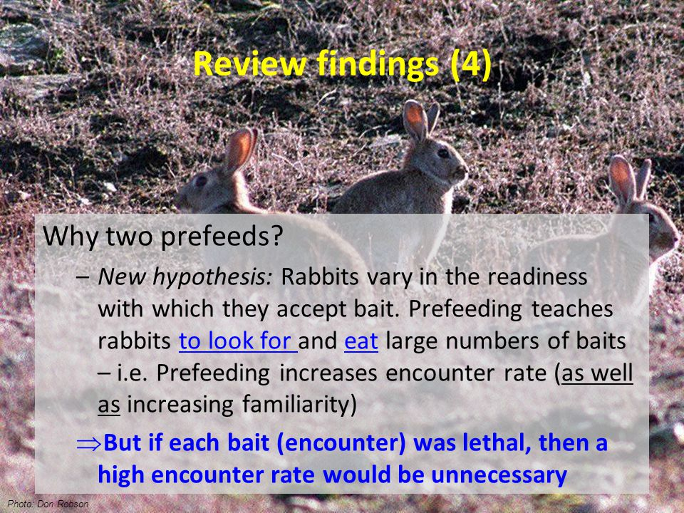 Review findings (4) Why two prefeeds.