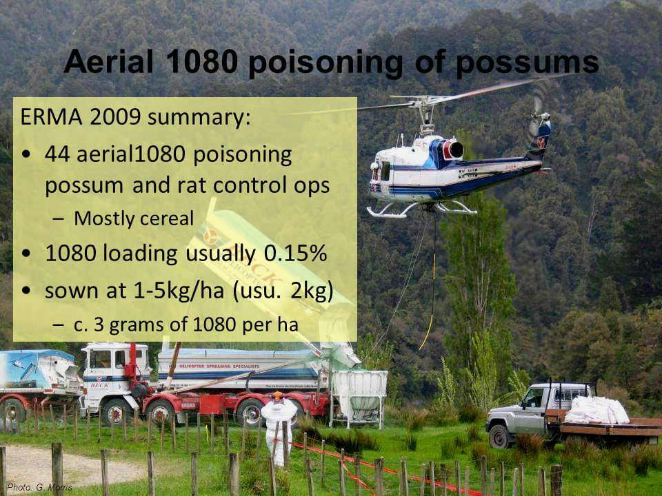 Aerial 1080 poisoning of possums ERMA 2009 summary: 44 aerial1080 poisoning possum and rat control ops –Mostly cereal 1080 loading usually 0.15% sown at 1-5kg/ha (usu.