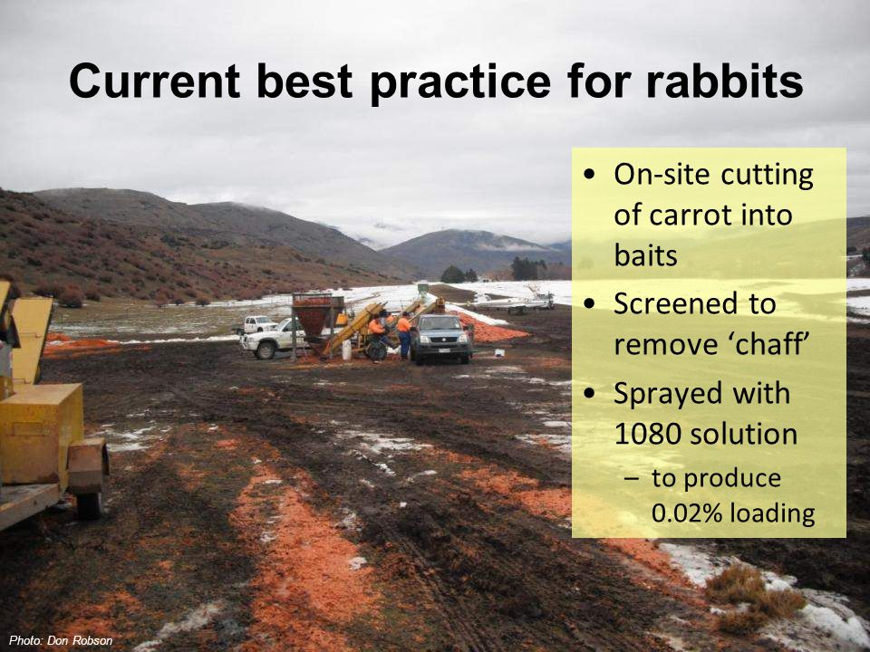Current best practice for rabbits On-site cutting of carrot into baits Screened to remove 'chaff' Sprayed with 1080 solution –to produce 0.02% loading Photo: Don Robson