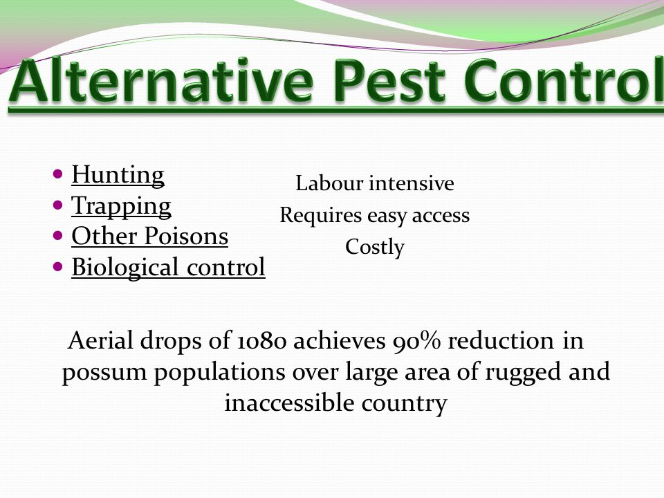 Hunting Trapping Other Poisons Biological control Labour intensive Requires easy access Costly Aerial drops of 1080 achieves 90% reduction in possum populations over large area of rugged and inaccessible country