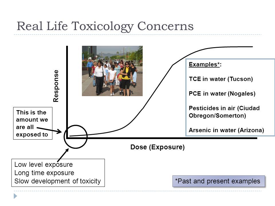 Real Life Toxicology Concerns Dose (Exposure) Response Low level exposure Long time exposure Slow development of toxicity Examples*: TCE in water (Tuc