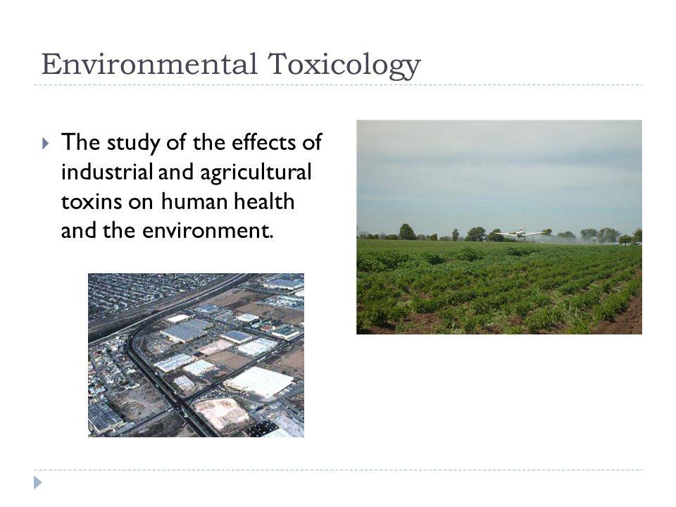 Environmental Toxicology  The study of the effects of industrial and agricultural toxins on human health and the environment.