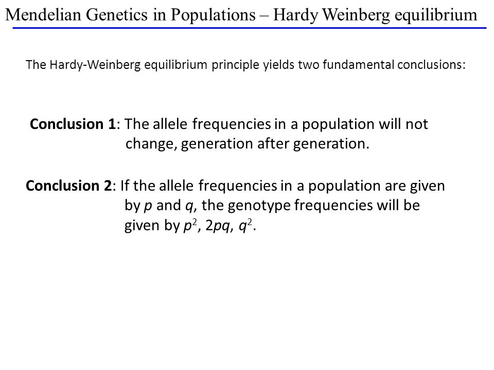 Mendelian Genetics in Populations – Hardy Weinberg equilibrium The Hardy-Weinberg equilibrium principle yields two fundamental conclusions: Conclusion