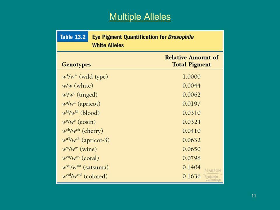 11 Multiple Alleles