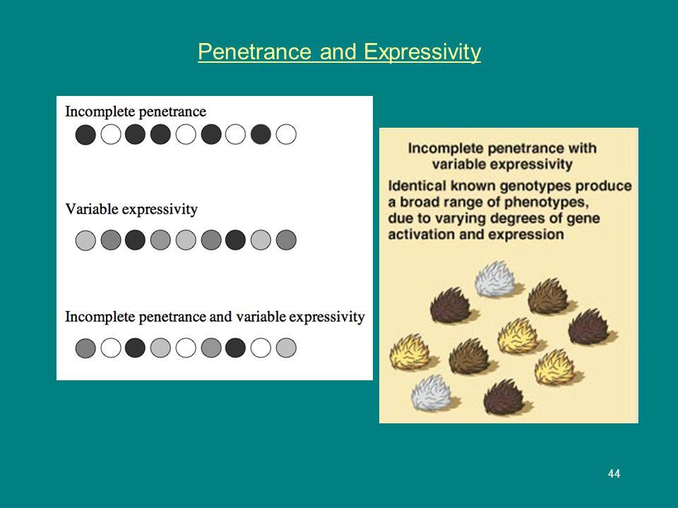 44 Penetrance and Expressivity