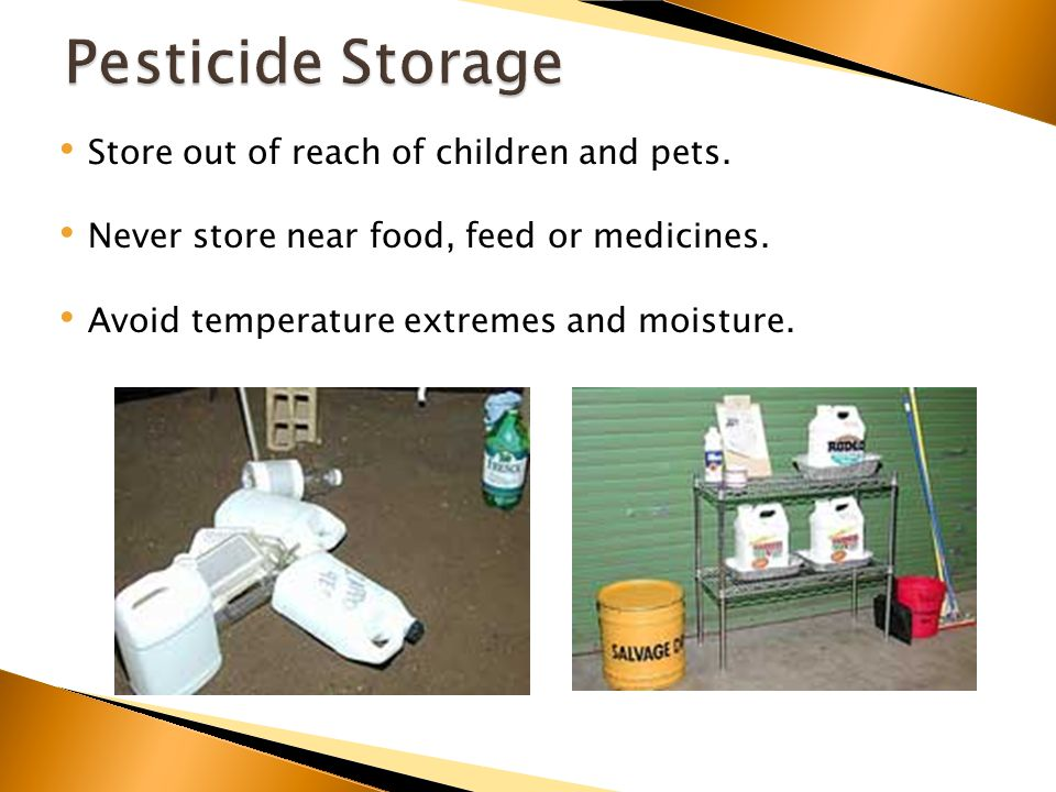 Store out of reach of children and pets. Never store near food, feed or medicines.