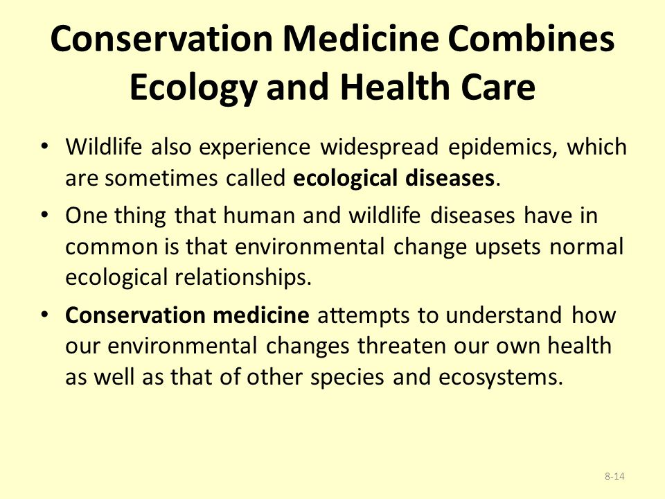 Conservation Medicine Combines Ecology and Health Care Wildlife also experience widespread epidemics, which are sometimes called ecological diseases.