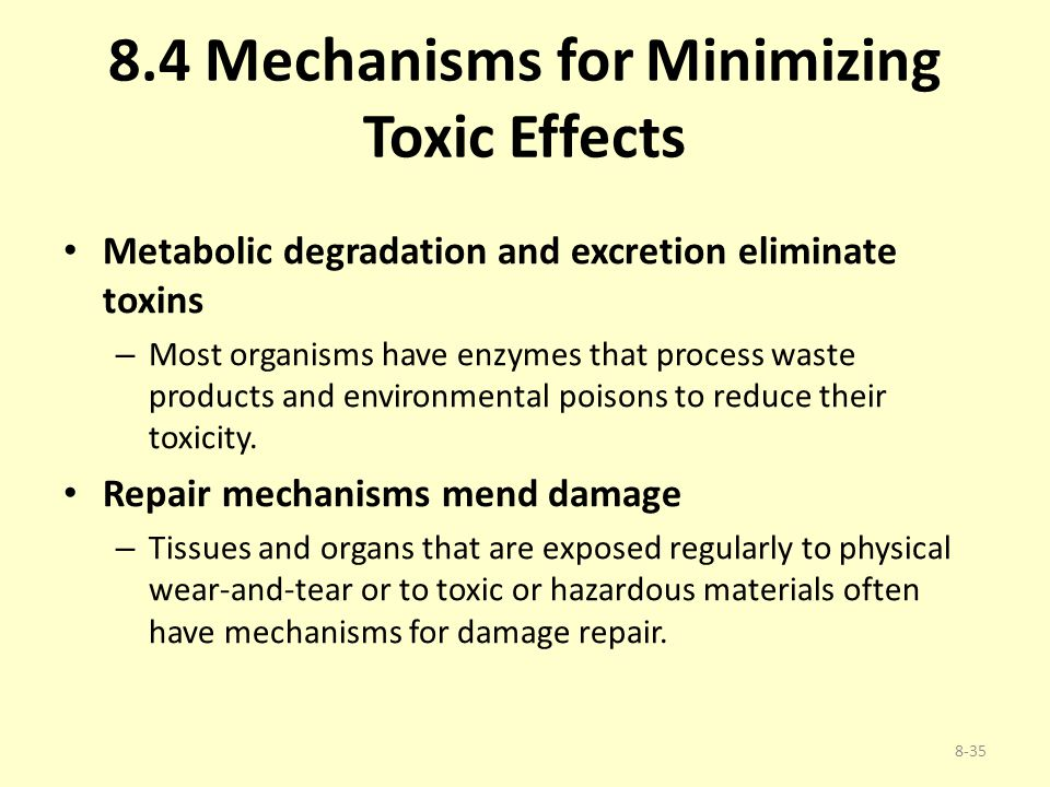 8.4 Mechanisms for Minimizing Toxic Effects Metabolic degradation and excretion eliminate toxins – Most organisms have enzymes that process waste prod