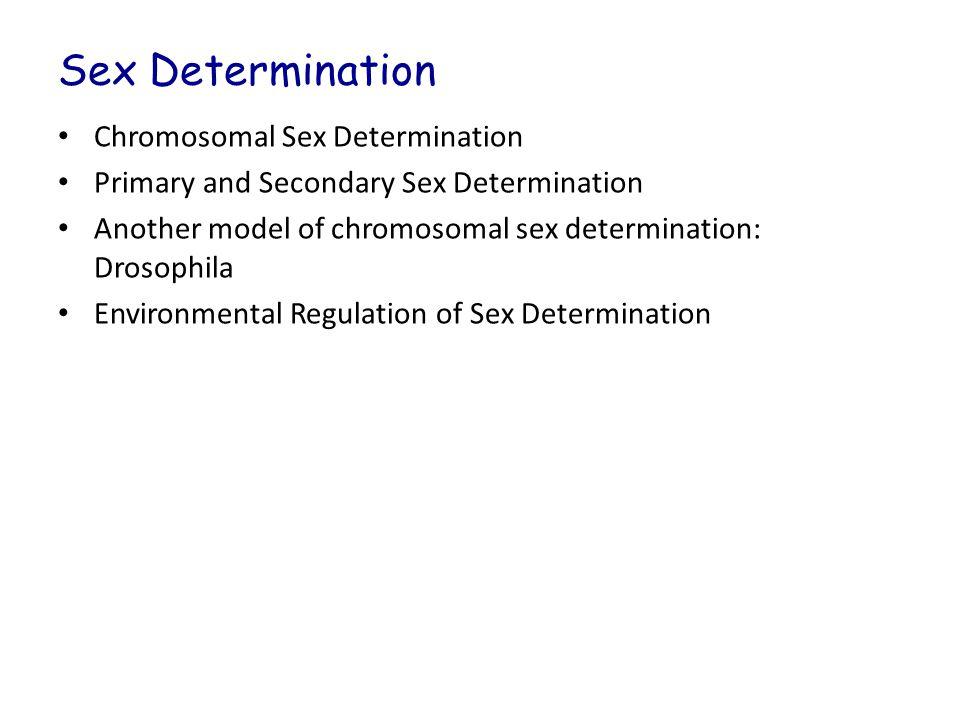 Sex Determination Chromosomal Sex Determination Primary and Secondary Sex Determination Another model of chromosomal sex determination: Drosophila Env