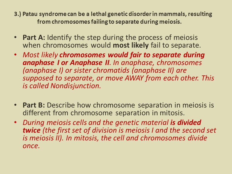 3.) Patau syndrome can be a lethal genetic disorder in mammals, resulting from chromosomes failing to separate during meiosis.
