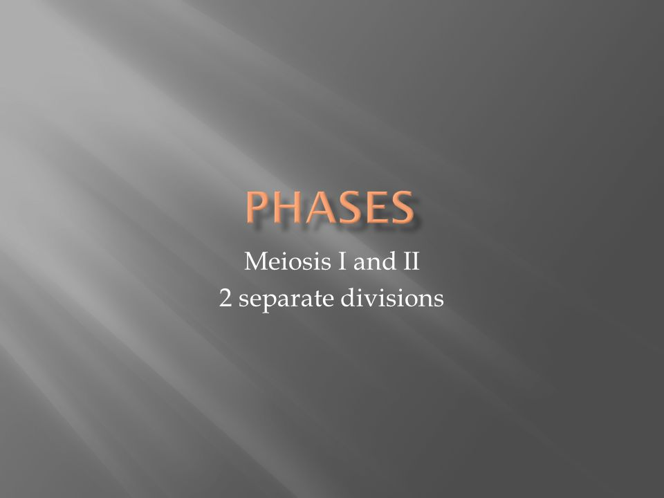 Meiosis I and II 2 separate divisions