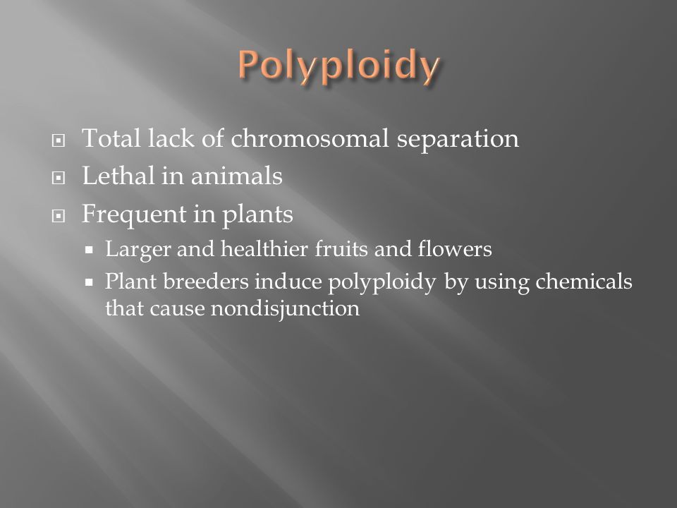  Total lack of chromosomal separation  Lethal in animals  Frequent in plants  Larger and healthier fruits and flowers  Plant breeders induce polyploidy by using chemicals that cause nondisjunction