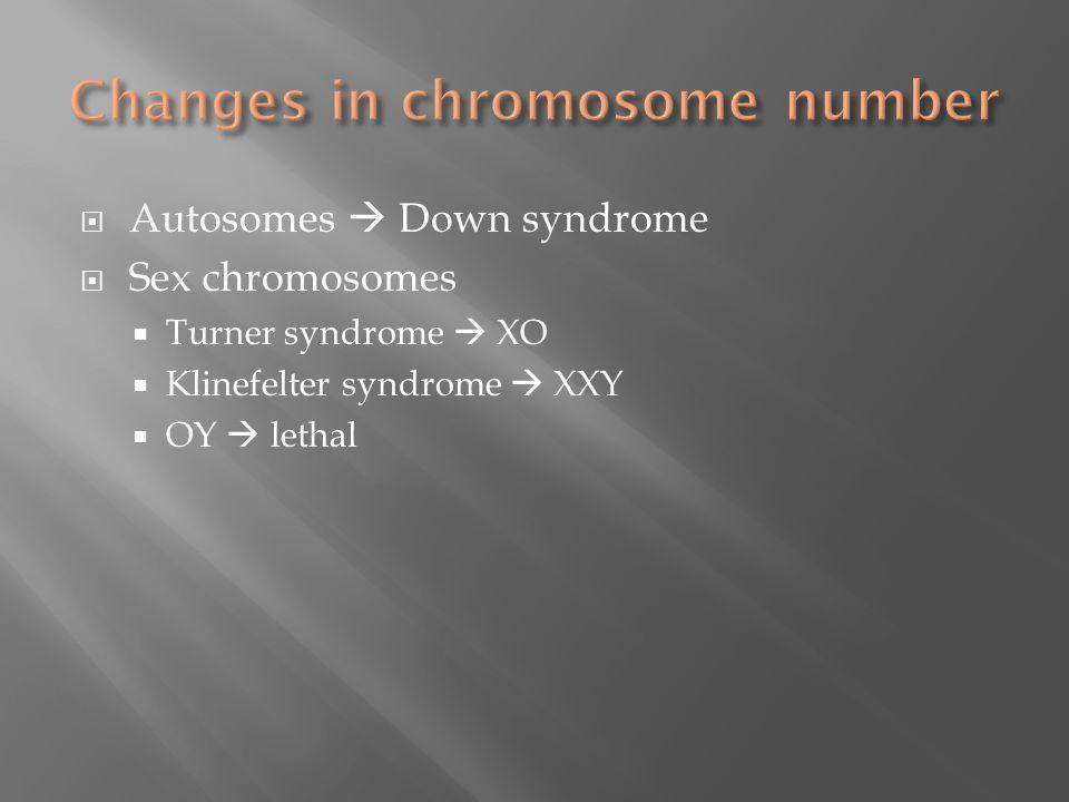  Autosomes  Down syndrome  Sex chromosomes  Turner syndrome  XO  Klinefelter syndrome  XXY  OY  lethal