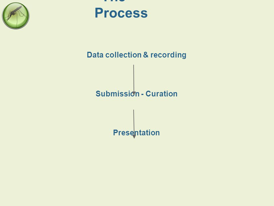 The Process Data collection & recording Submission - Curation Presentation