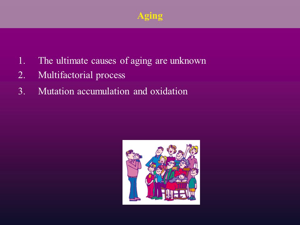 1.The ultimate causes of aging are unknown 2.Multifactorial process 3.Mutation accumulation and oxidation Aging