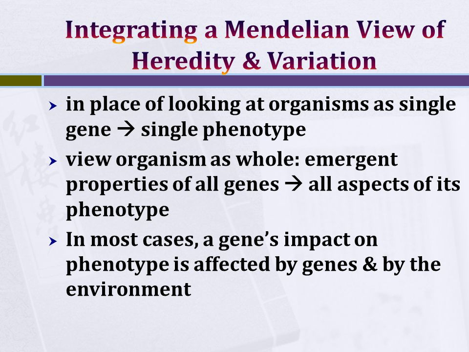  in place of looking at organisms as single gene  single phenotype  view organism as whole: emergent properties of all genes  all aspects of its phenotype  In most cases, a gene's impact on phenotype is affected by genes & by the environment