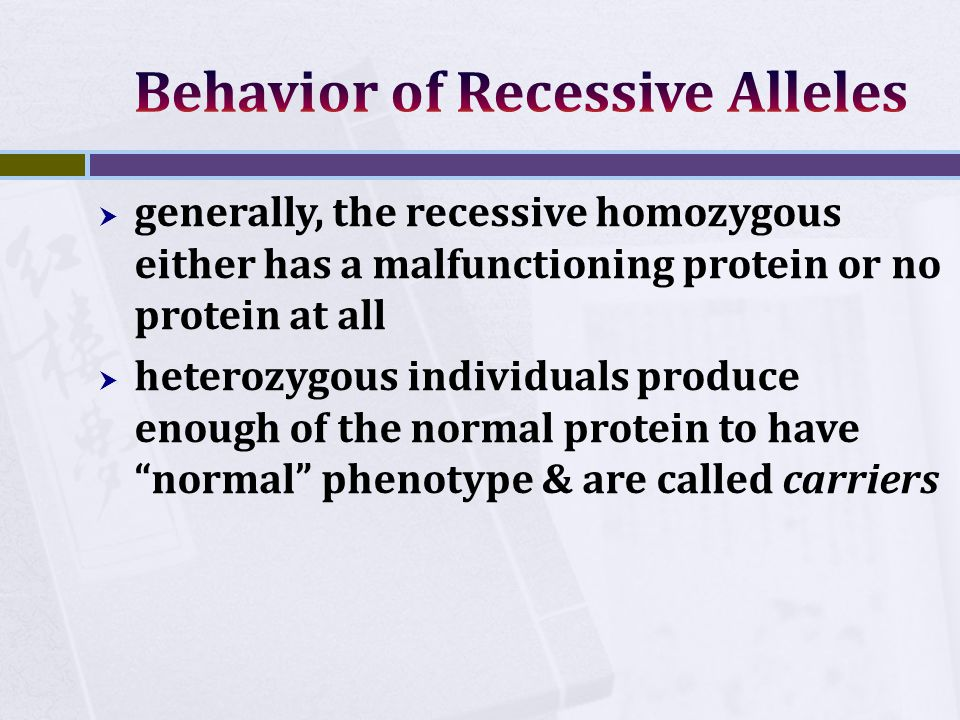  generally, the recessive homozygous either has a malfunctioning protein or no protein at all  heterozygous individuals produce enough of the normal protein to have normal phenotype & are called carriers