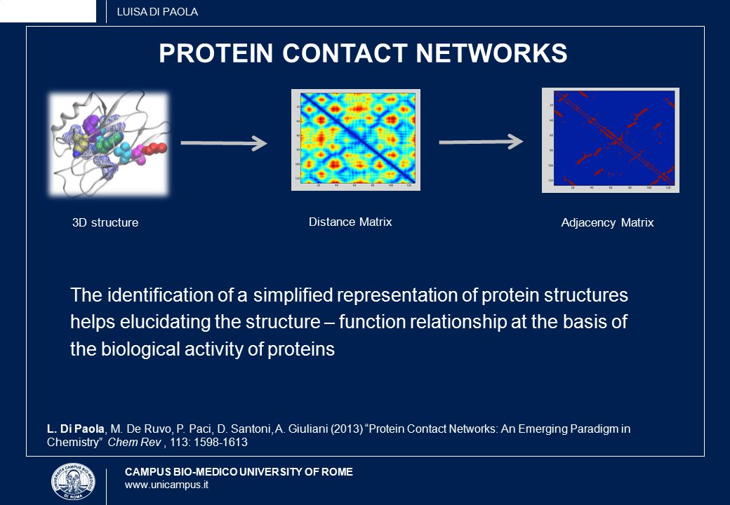 CAMPUS BIO-MEDICO UNIVERSITY OF ROME www.unicampus.it LUISA DI PAOLA PROTEIN CONTACT NETWORKS 3D structure Distance Matrix Adjacency Matrix L.