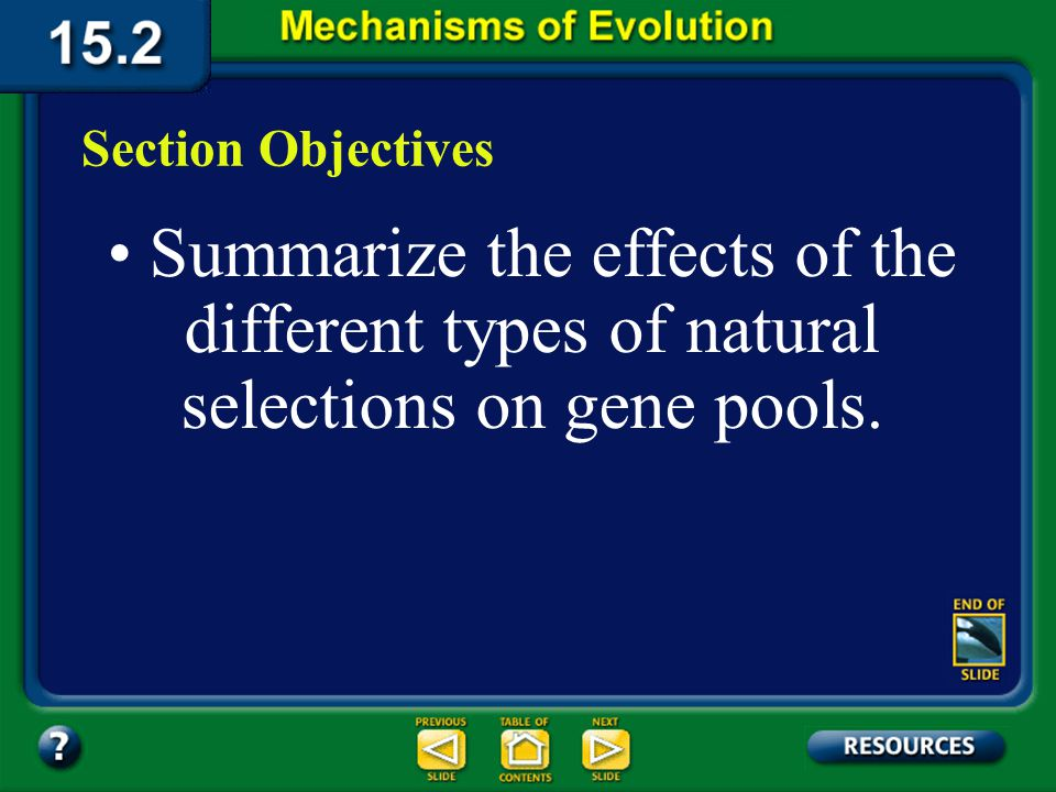 15.2 Section Objectives – page 404 Section Objectives Summarize the effects of the different types of natural selections on gene pools.