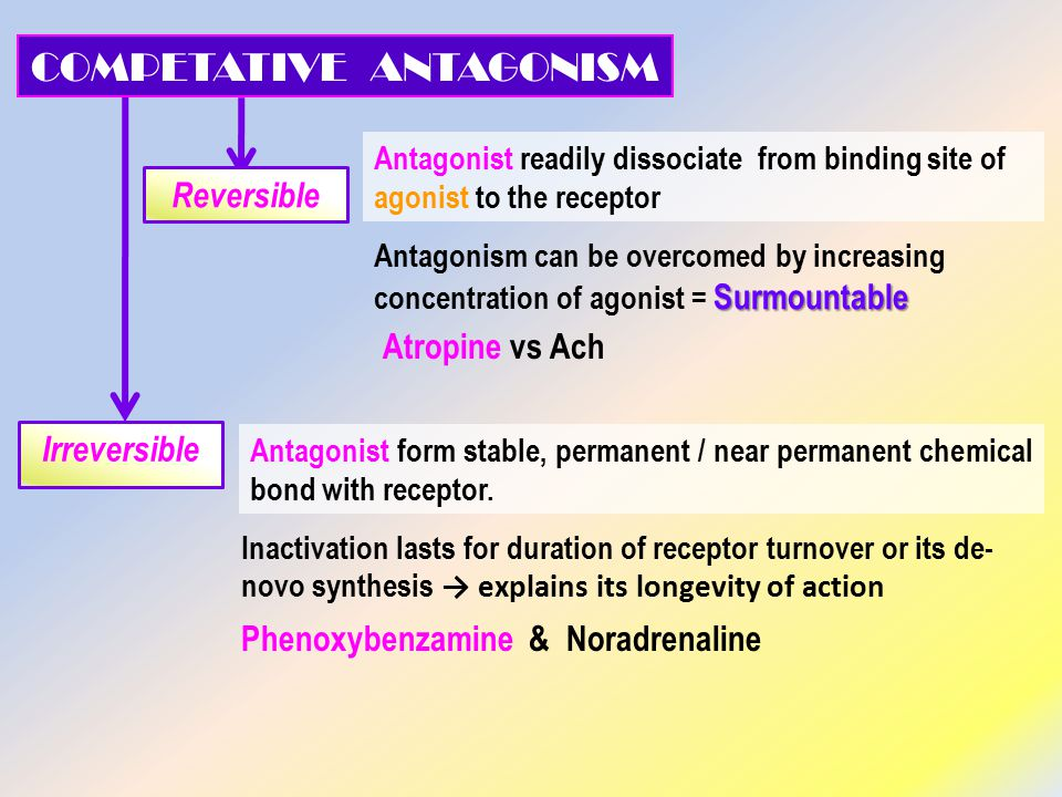 Antagonist readily dissociate from binding site of agonist to the receptor Antagonist form stable, permanent / near permanent chemical bond with receptor.