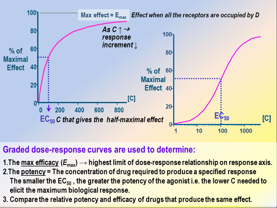% of Maximal Effect 0 20 40 60 80 100 0200400600800 Max effect = E max Effect when all the receptors are occupied by D C that gives the half-maximal effect As C ↑  response increment ↓ 0 20 40 60 80 100 1101001000 % of Maximal Effect EC 50 Graded dose-response curves are used to determine: 1.The max efficacy ( E max ) → highest limit of dose-response relationship on response axis.