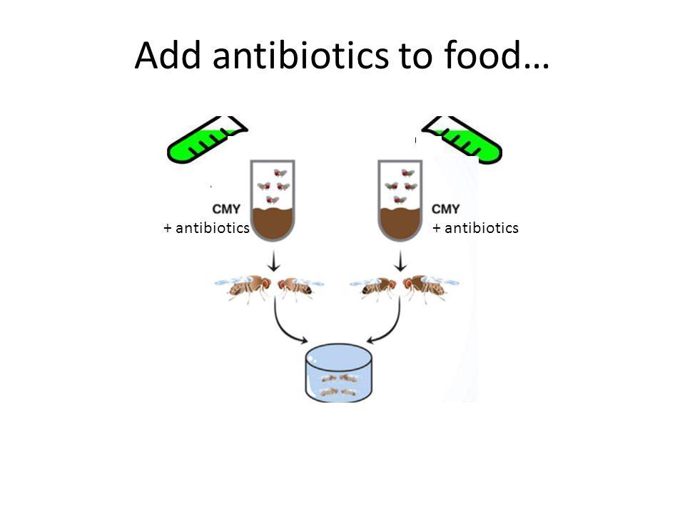 Add antibiotics to food… + antibiotics