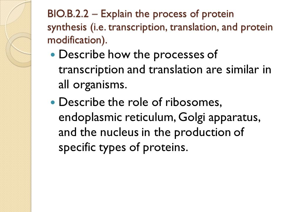 BIO.B.2.2 – Explain the process of protein synthesis (i.e. transcription, translation, and protein modification). Describe how the processes of transc