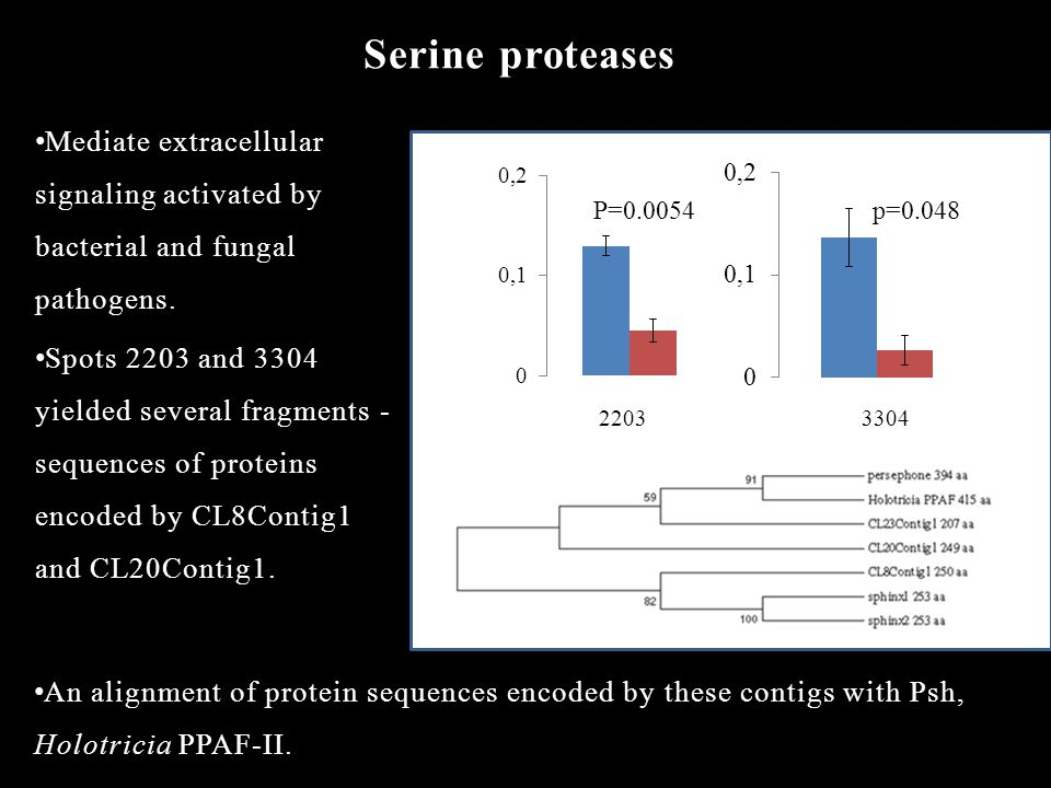 Serine proteases Mediate extracellular signaling activated by bacterial and fungal pathogens.