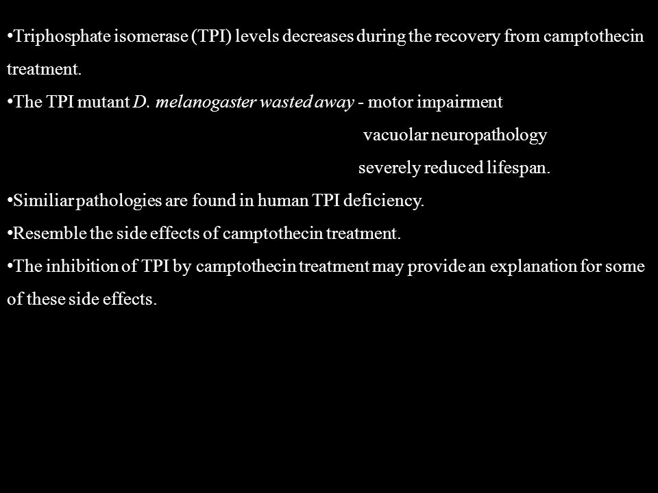 Triphosphate isomerase (TPI) levels decreases during the recovery from camptothecin treatment.