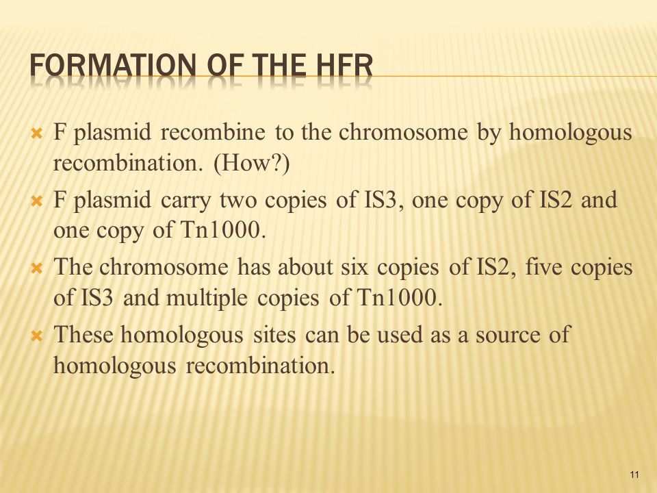  F plasmid recombine to the chromosome by homologous recombination.