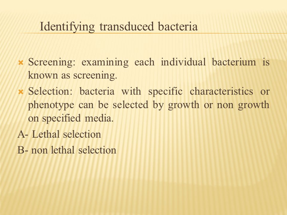 Identifying transduced bacteria  Screening: examining each individual bacterium is known as screening.