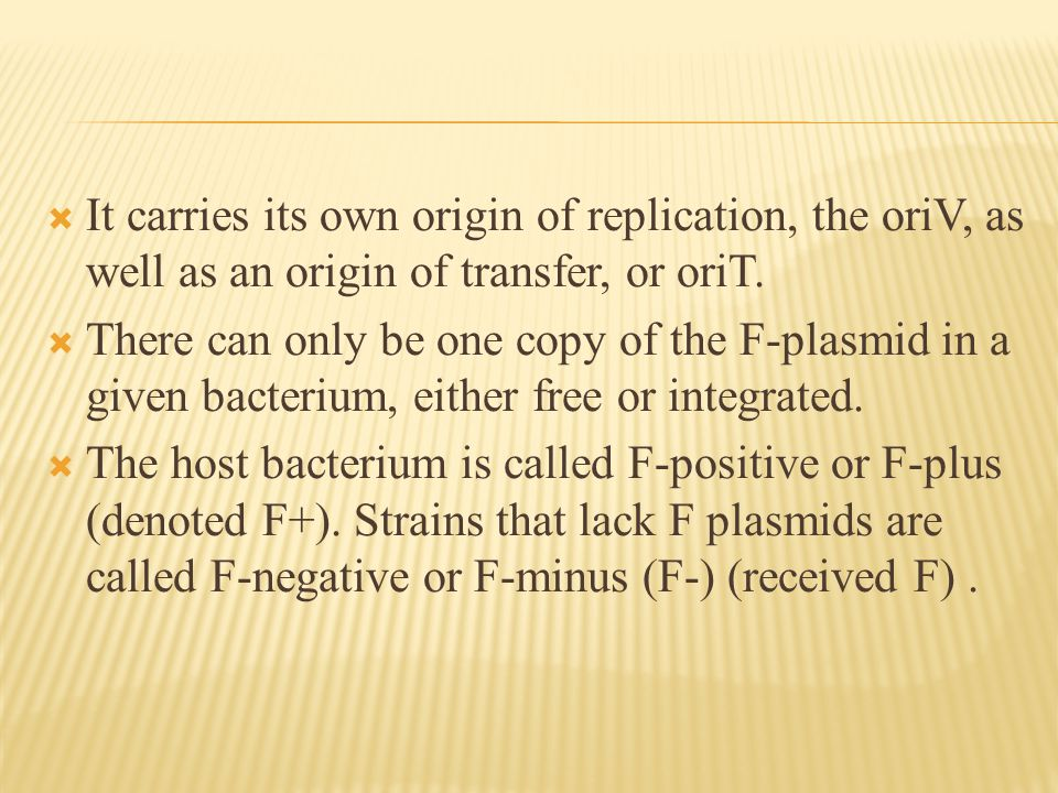  It carries its own origin of replication, the oriV, as well as an origin of transfer, or oriT.