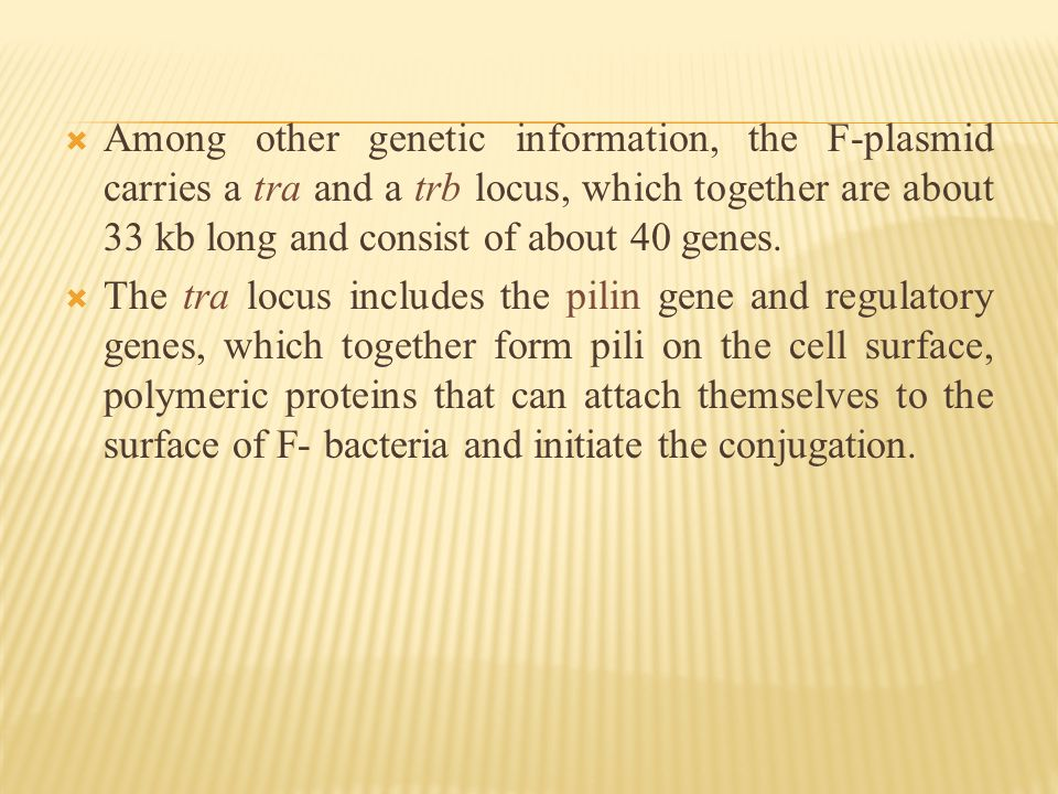  Among other genetic information, the F-plasmid carries a tra and a trb locus, which together are about 33 kb long and consist of about 40 genes.