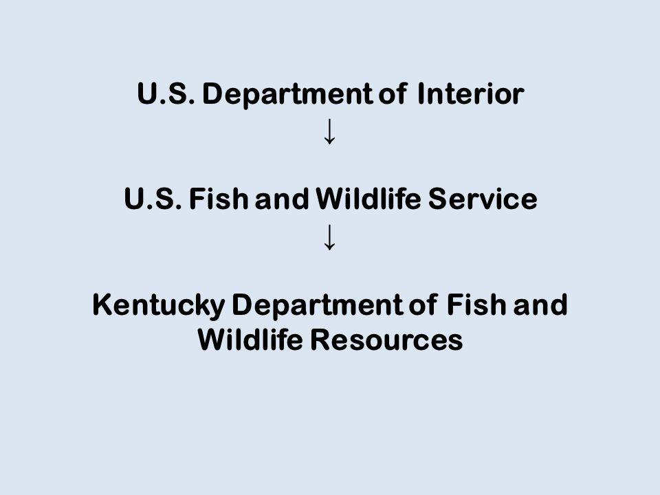 U.S. Department of Interior ↓ U.S.