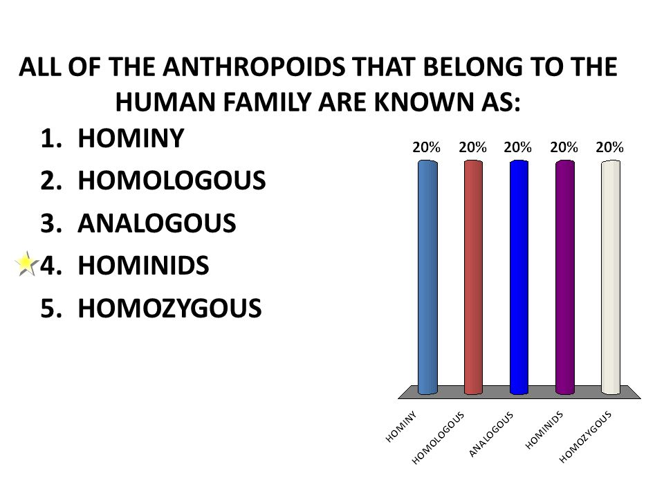 ALL OF THE ANTHROPOIDS THAT BELONG TO THE HUMAN FAMILY ARE KNOWN AS: 1.HOMINY 2.HOMOLOGOUS 3.ANALOGOUS 4.HOMINIDS 5.HOMOZYGOUS