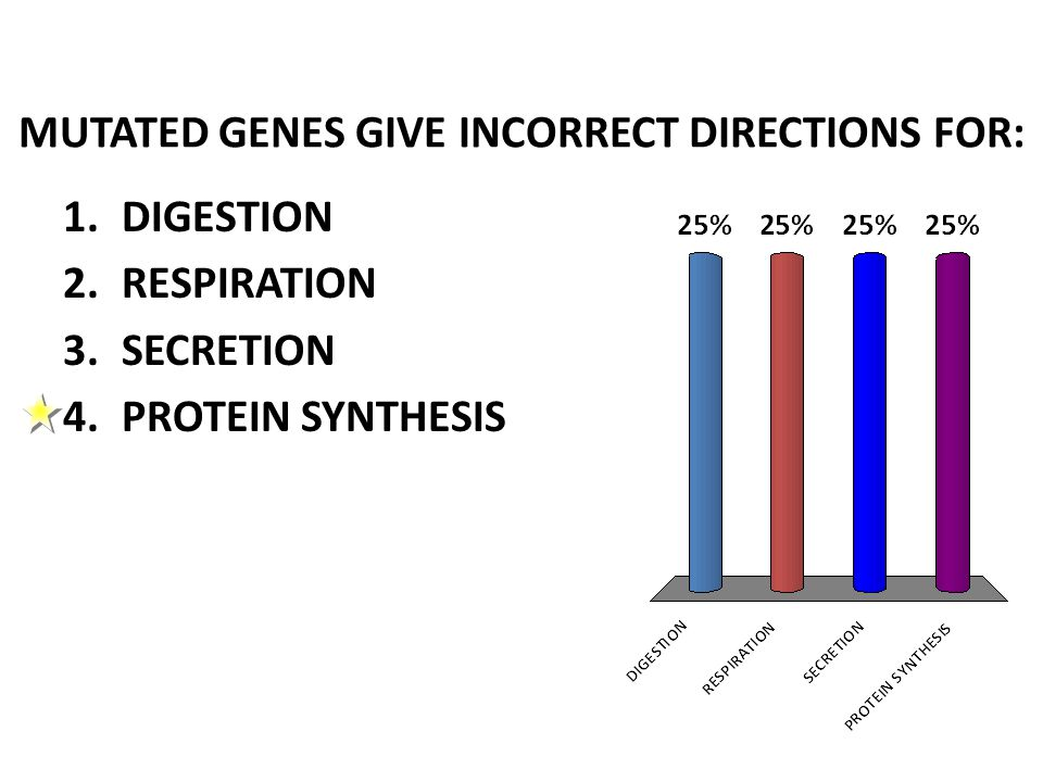 MUTATED GENES GIVE INCORRECT DIRECTIONS FOR: 1.DIGESTION 2.RESPIRATION 3.SECRETION 4.PROTEIN SYNTHESIS