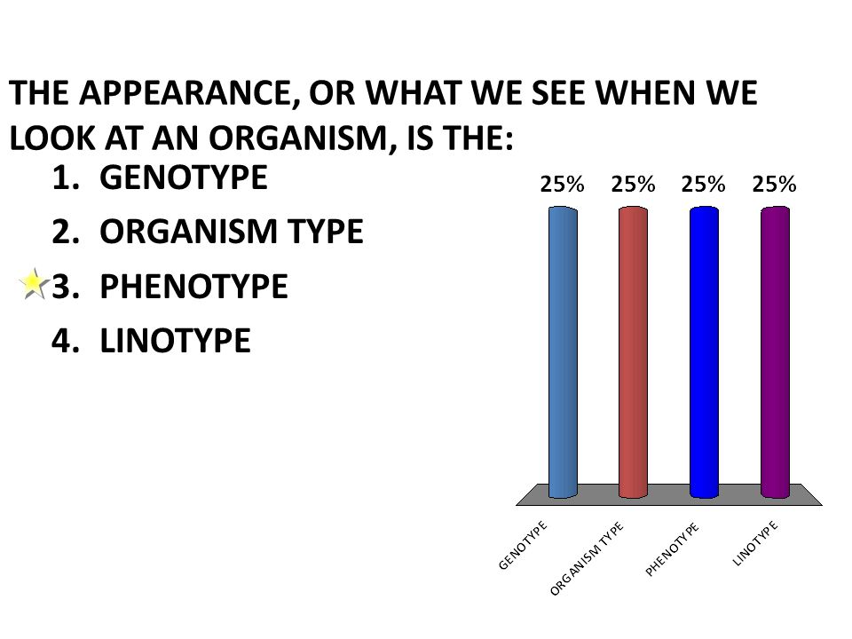 THE APPEARANCE, OR WHAT WE SEE WHEN WE LOOK AT AN ORGANISM, IS THE: 1.GENOTYPE 2.ORGANISM TYPE 3.PHENOTYPE 4.LINOTYPE