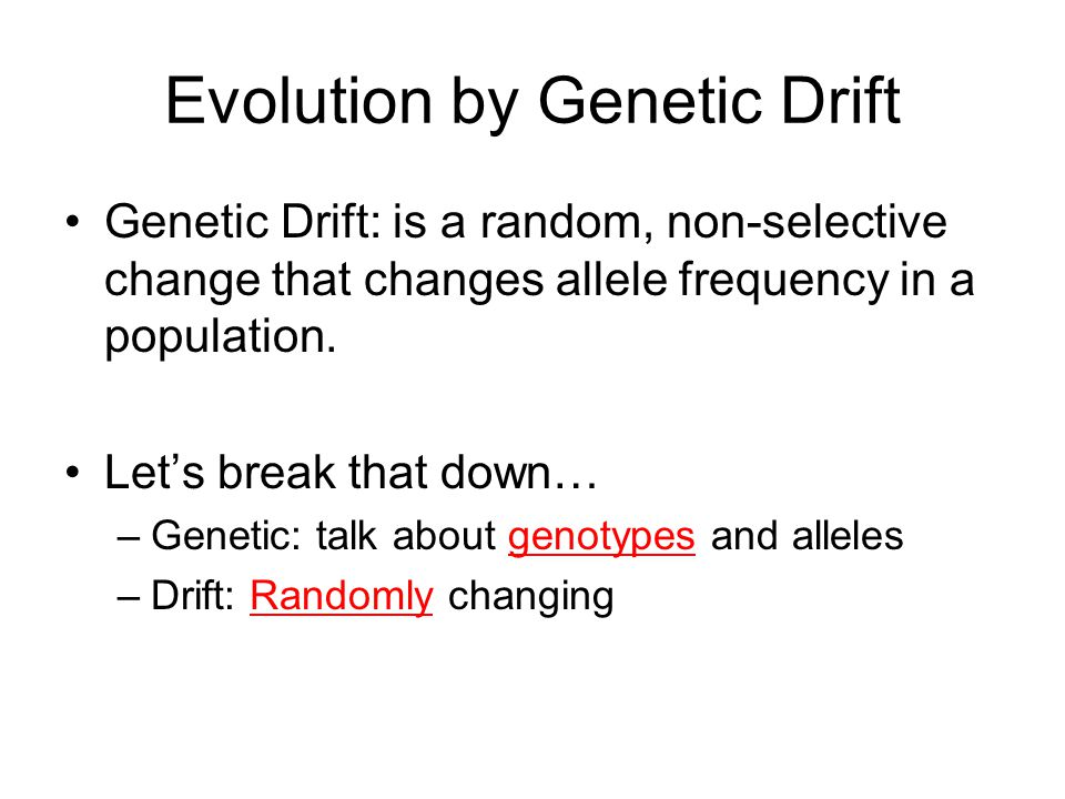 Evolution by Genetic Drift Genetic Drift: is a random, non-selective change that changes allele frequency in a population.