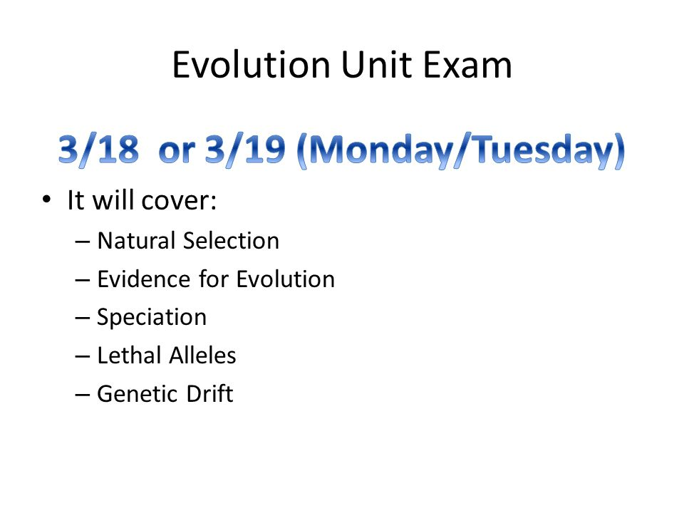 Evolution Unit Exam
