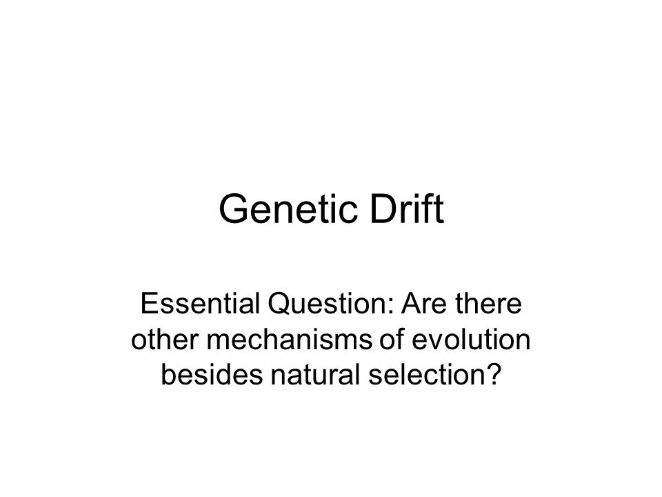 Genetic Drift Essential Question: Are there other mechanisms of evolution besides natural selection