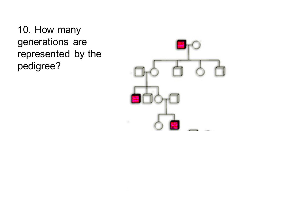 10. How many generations are represented by the pedigree?