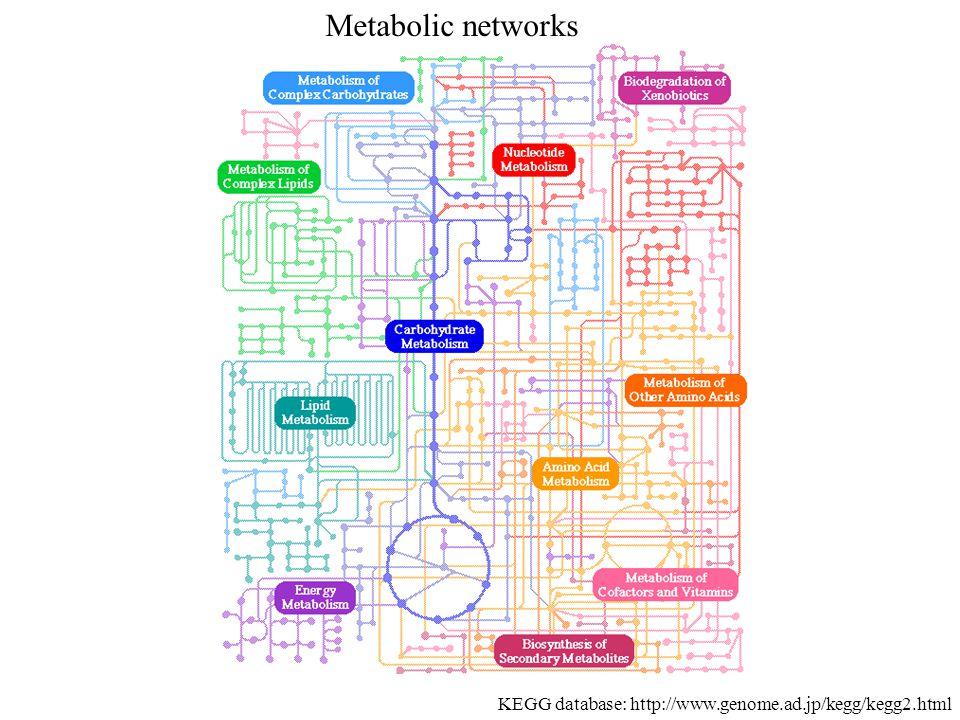 KEGG database: http://www.genome.ad.jp/kegg/kegg2.html Metabolic networks
