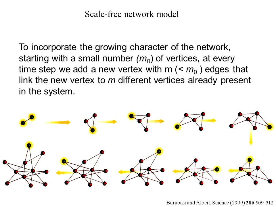To incorporate the growing character of the network, starting with a small number (m 0 ) of vertices, at every time step we add a new vertex with m (<