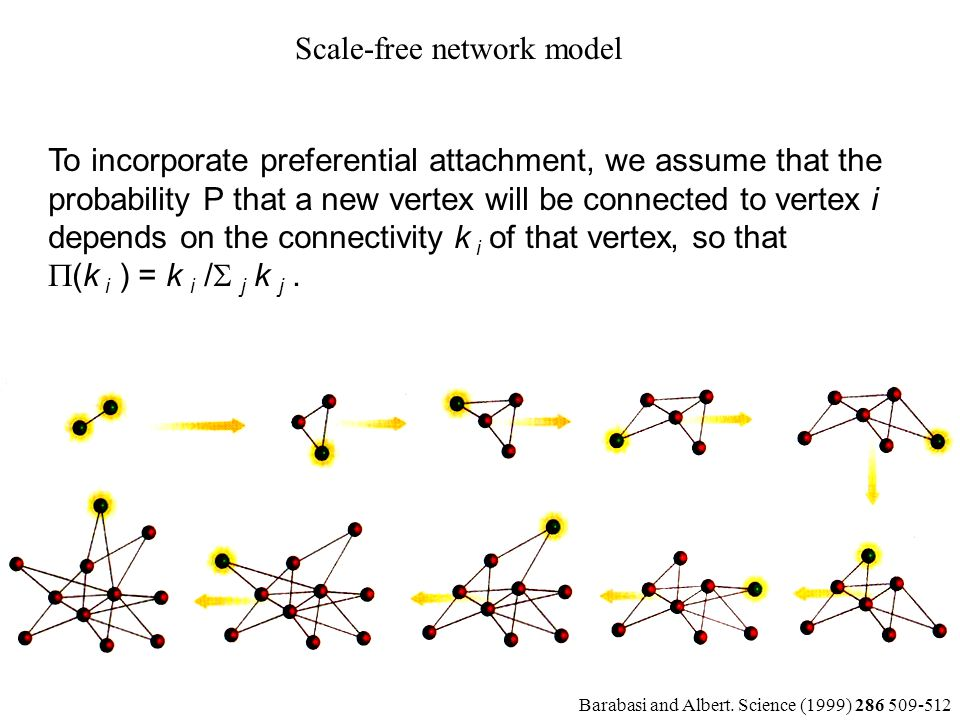 To incorporate preferential attachment, we assume that the probability P that a new vertex will be connected to vertex i depends on the connectivity k