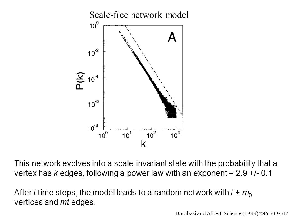 This network evolves into a scale-invariant state with the probability that a vertex has k edges, following a power law with an exponent = 2.9 +/- 0.1